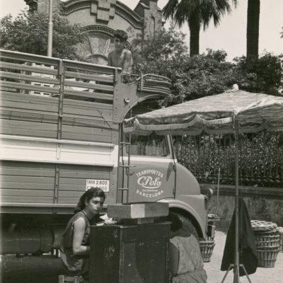 Camió de transports Polo