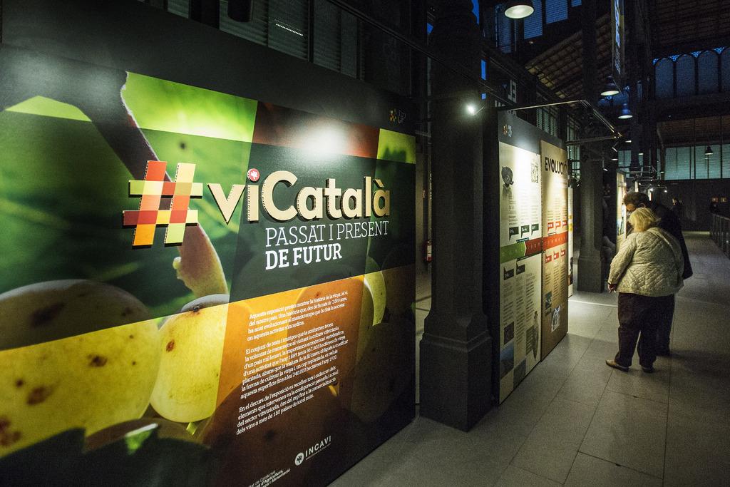 #viCatalà